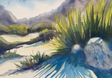 1909 - Desert Trail