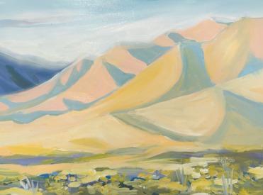 1917 Desert Hills